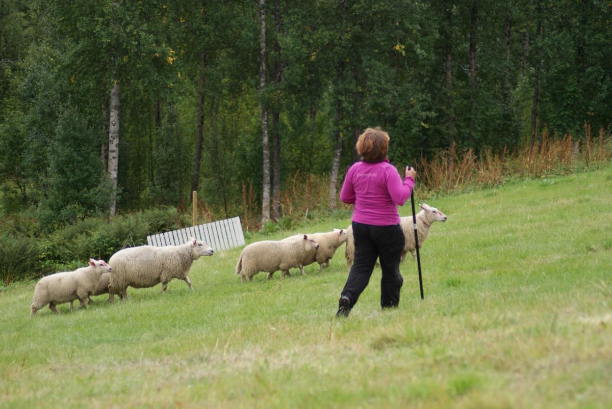 Anita på tur inn i deleringen